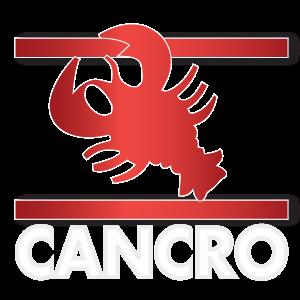 Oroscopo Cancro Paolo Fox