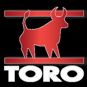 Oroscopo Paolo Fox Toro