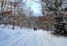 neve del monte romito