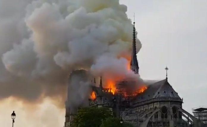 Notre Dame, assassins creed