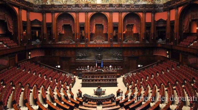 Riccardo Ricciardi Decreto Scuola Decreto Giustizia Election Day
