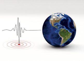 Terremoto Nuova Zelanda Pozzuoli