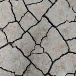 terremoto Iran Turchia