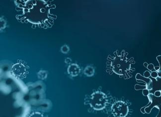 Coronavirus, bollettino protezione civile