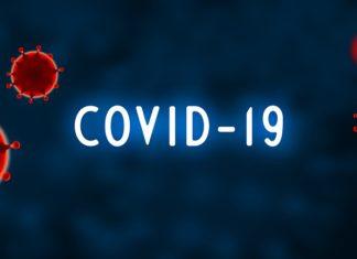 coronavirus bollettino, vespignani