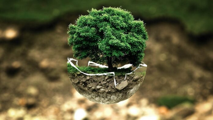 green economy ambiente