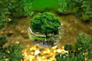 Recovery Fund |  un'occasione per l'Italia per investire sull'ambiente