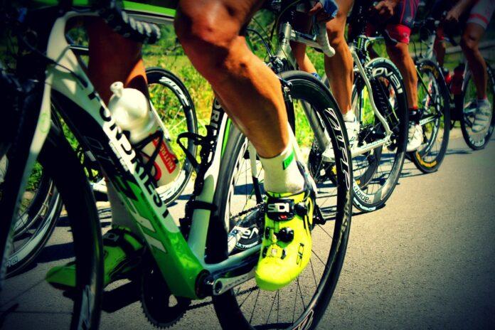 Fortunato Ciclismo